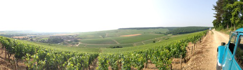 A Classic Wine Journey through France